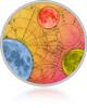 Horoscop Lunar Rac Octombrie Avantaje-Planetare